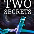 Selling with online payment: Two Secrets (Hardcover)