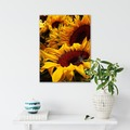 Selling with online payment: Sunflowers Blossom 16x20 Canvas