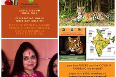 Free Listing: Tiger Habitats can save us from COVID 19: Day out with Dr. Madhu!