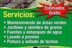 Servicios: Estimado Gratis - Hago tu patio área este y metro