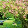 NOS JARDINS A LOUER: Grand jardin avec accès au gîte
