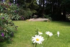 NOS JARDINS A LOUER: joli jardin dans la campagne audomaroise
