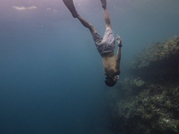 Freediving courses: Online equalization workshop (frenzel and Mouthfill)