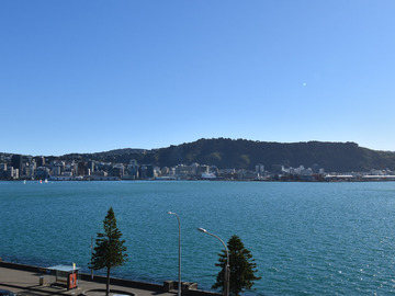 Exclusive to LiveLocal: 180 Degree Harbour Views ⭐ Beautiful Oriental Bay