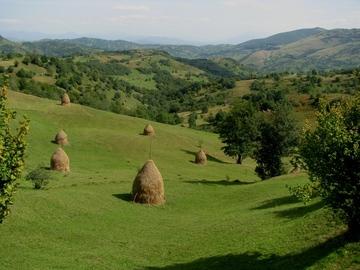 Réserver (avec paiement en ligne): Villages typiques de Maramures et Bucovine - Roumanie