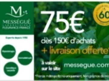 Vente: Code réduction Mességué (75€)