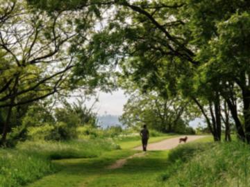 Actualité: Appli gratuite de running, promenade et découverte