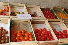 Vente avec paiement en direct: tomates anciennes bio