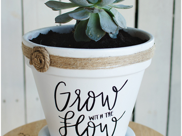 "Selling with online payment: 6"" x 6"" Specialty Made Flower Pots"