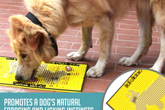 Buy Now: Our K9 : Lick Mat - Oral Hygiene Mat - Dog Teeth Cleaning - Dog G