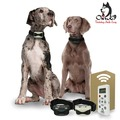 Buy Now: 2 Dog Training Collars with Remote - 800 Yards - Med – Large