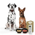 Buy Now: 2 Dog Training Collars with Remote - 800 Yards - Small - Medium