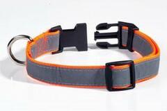 Buy Now: Petflect Orange/Gray Reflective Nylon/Plastic Adjustable Dog Coll