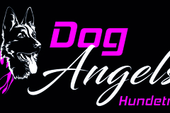 Dienstleistung: Dog Angels Hundetrainer