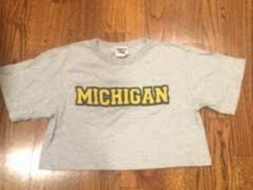 Selling A Singular Item: MICHIGAN  Cropped T-Shirt