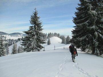 Réserver (avec paiement en ligne): Randonnée en raquette ou ski randonnée - Roumanie