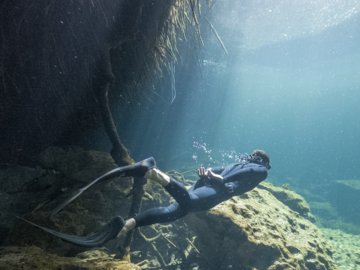Freediving courses: Apnea Total Freediver Course in Mexico's Cenotes