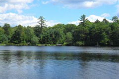 I have a place to share or rent, here is my listing :): Room for Rent on a Peaceful Lake