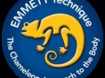 Programs: Emmett 3-week Transformation (3-hours over 3 or 6 weeks)