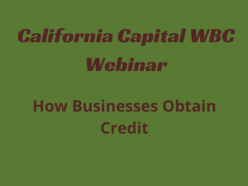 Workshop: How Businesses Obtain Credit