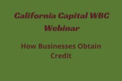 Workshop: How Businesses Obtain Credit