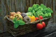 NOS JARDINS A PARTAGER: offre jardin pour un projet de permaculture