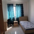 Rooms for rent: Room available in a shared apartment in Msida