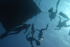 Freediving courses: SSI Level 2