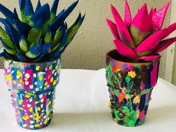Selling with online payment: Succulent Plants in  Painted Pots