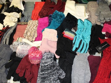 Liquidation/Wholesale Lot: 50 Pairs New High Quality Womens Winter Fashion Gloves