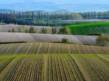 コミュニティ: セカンドライフは北海道「美瑛」で農業を始めませんか? 現在「就農研修生」を募集中