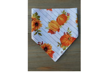Selling: Fall Pumpkins pet bandana