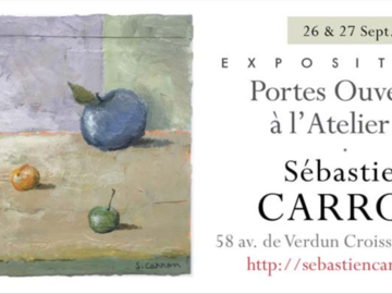Apprendre: Sébastien Carron Artiste peintre et Professeur d'Arts Plastiques