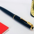 Renting out: Parker Victory, 14k M nib