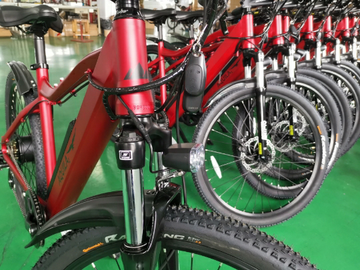 Monthly Rate: Premium Wedgetail Electric Bike