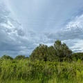 Land Available for Lease: Vacant land in Viking estates