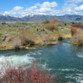 For Sale: 3 Inkom Area Water Rights for Sale (one w/ 1885 priority date)