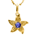 Buy Now:  IOLITE 10KT SOLID GOLD PENDANT