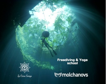 Cours d'apnée: Molchanovs Wave 1 in the magical Cenotes of Tulum