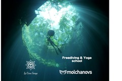 Freediving courses: Molchanovs Wave 1 in the magical Cenotes of Tulum