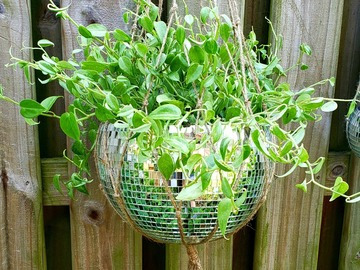 Selling with online payment: Silver Disco Ball Planter, 12 Inches
