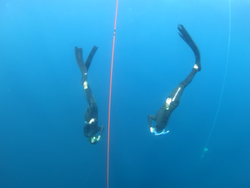 Cours d'apnée:  Freediving course in 1 to 1 Tenerife, Spain