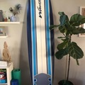 For Rent: Wave Storm Soft Top Longboard