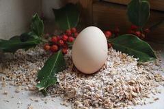 Vente avec paiement en direct: Oeufs de poules fermiers