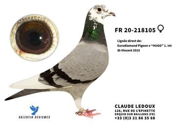 Vente avec paiement en ligne: FR.20-218105 :EURO DIAMOND  x  SOEUR NEW LAUREAAT  x  HUGO