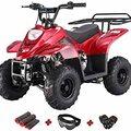 Buy Now: Lot of 2 KIDS 110 cc ATV 4 wheeler