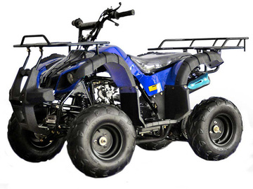 Buy Now: KIDS 125cc ATV . UTILITY STYLE . Fully auto with reverse