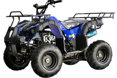 Liquidation/Wholesale Lot: Lot of 2  125cc ATV . UTILITY STYLE . Fully auto with reverse