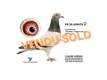 Vente avec paiement en ligne: FR .20-209978