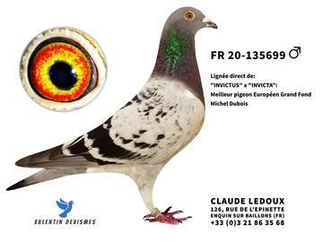 Vente avec paiement en ligne: FR.20-135699 PETIT FILS INVICTUS  x  SOEUR INVICTUS